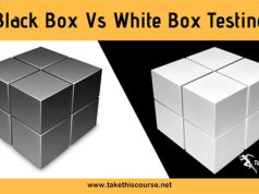 Black Box Testing vs White Box Testing