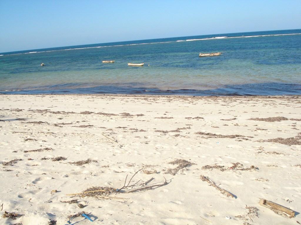 Safaris met bestemming Zanzibar