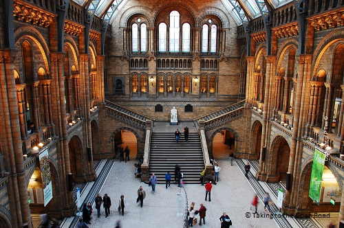 3 days in london on the cheap natural history museum takingtotheopenroad peggytee