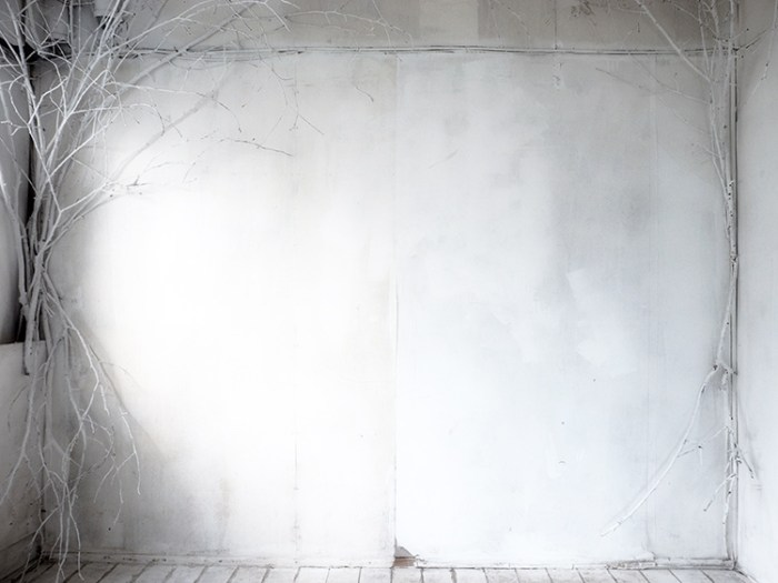 光画社スタジオ「素」白い木の部屋