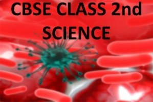 CBSE Class 2nd Science