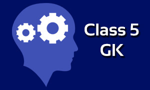 NCERT - CBSE Class 5 GK Classes & Offline | ICSE complete Solutions
