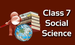 Class 7 Social Science Classes Online | CBSE | ICSE | NCERT Solutions