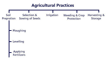 NCERT Solutions For Class 8 Science Crop Production and Management