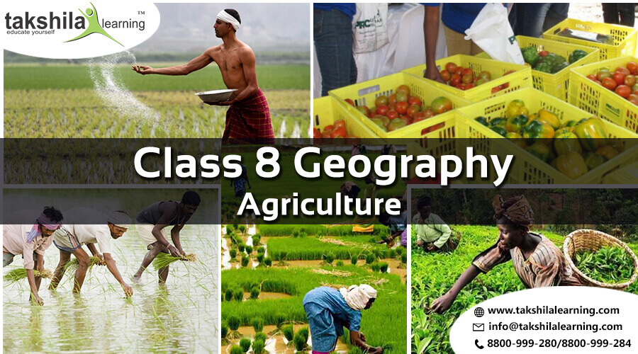 CBSE & NCERT Solutions for Class 8 Agriculture Geography - CH4