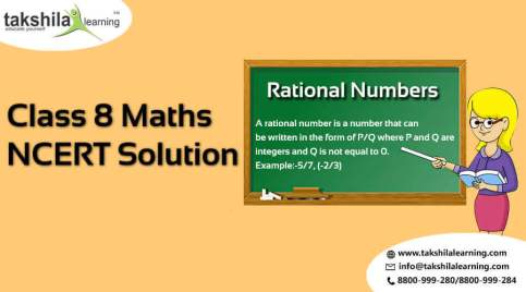 NCERT Solution for Class 8 Maths - Rational Numbers