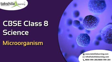 Class 8 Science Chapter 2 Microorganism Online NCERT Solutions