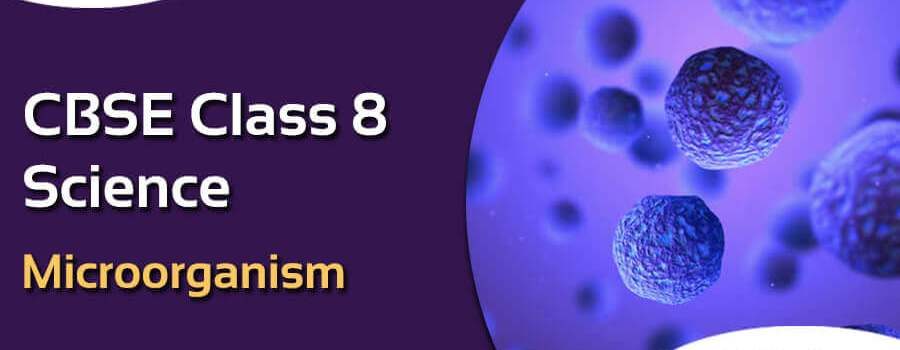NCERT Solutions for Class 8 Science Microorganism Chapter 2