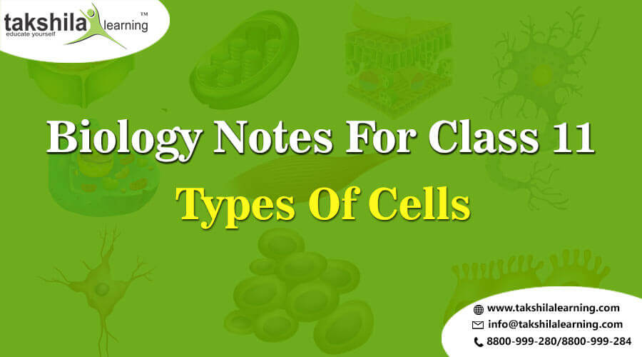 Important Topic Biology Class 11 Notes And Solutions Types Of Cell - Unit 3