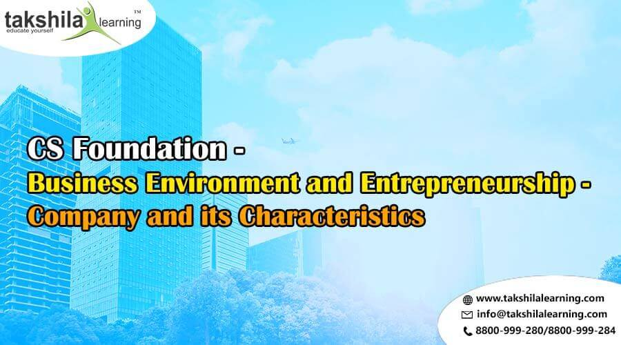 Business Environment and Entrepreneurship - Company and its Characteristics