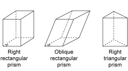 NCERT Solutions Class for 8 Maths Visualizing Shapes Prism