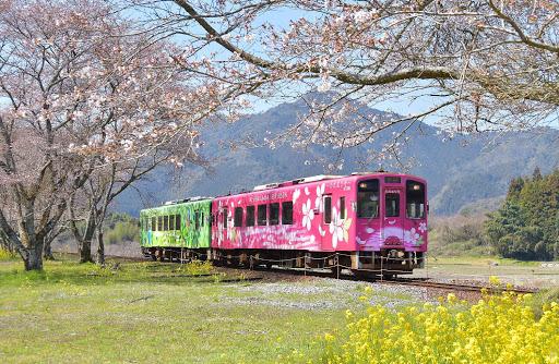 TAKUMI lifestyle - Seiryu Miharashi 7