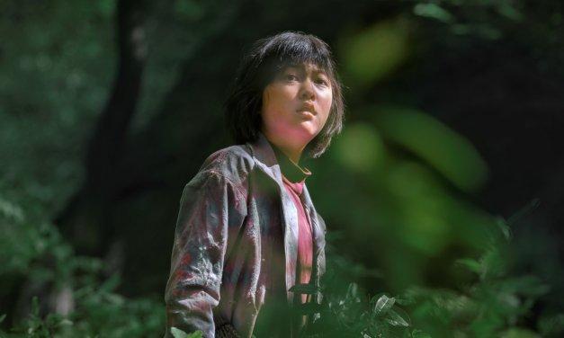 Découvrez Okja, un film sud-coréen bientôt disponible sur Netflix