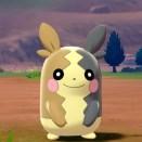 Pokemon-epee-et-bouclier-009