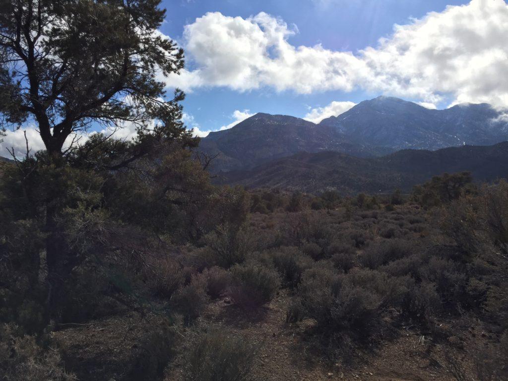 Mountain Springs, La Madre Mountains, Las Vegas, Nevada, Agave Roasting Pits