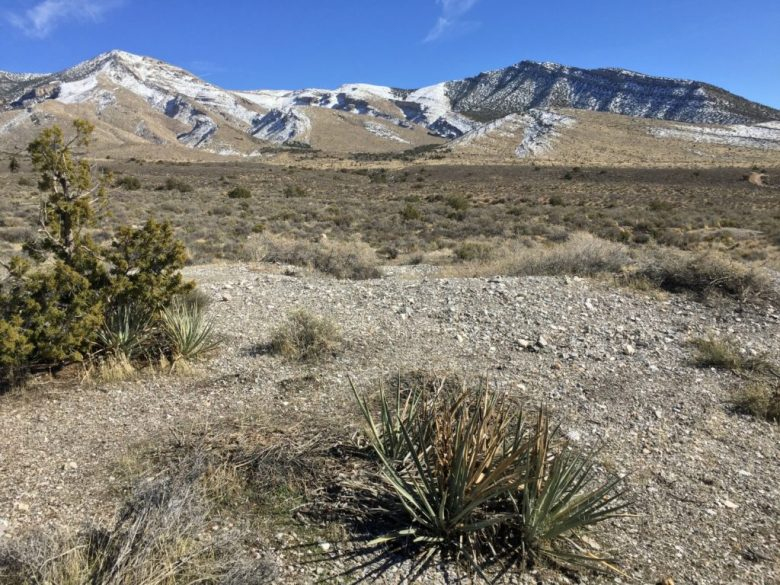 Cottonwood Valley, Nevada, Agave Roasting Pits, Mines, Old Spanish Trail