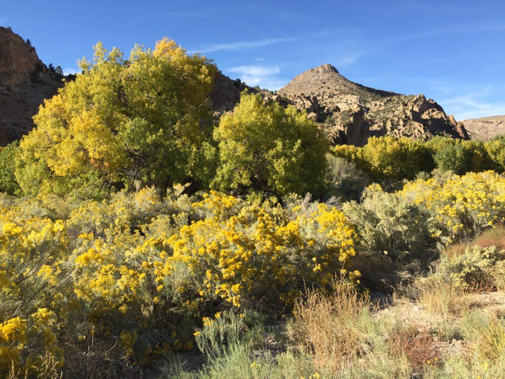 Etna, Nevada, Etna Cave, Pictographs, Petroglyphs, Rock Art