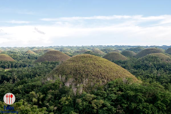 Bohol Chocolate Hills 03