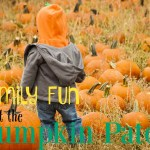 Family fun at the Pumpkin Patch
