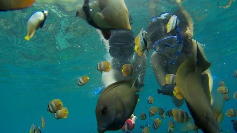 Reason to visit Bali snorkeling