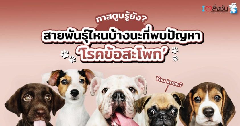 พันธุ์สุนัขที่มักเป็นโรคข้อสะโพกเสื่อม