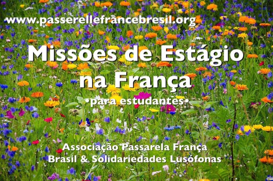 Conheça a Associação Passarela França Brasil e Solidariedades Lusófonas