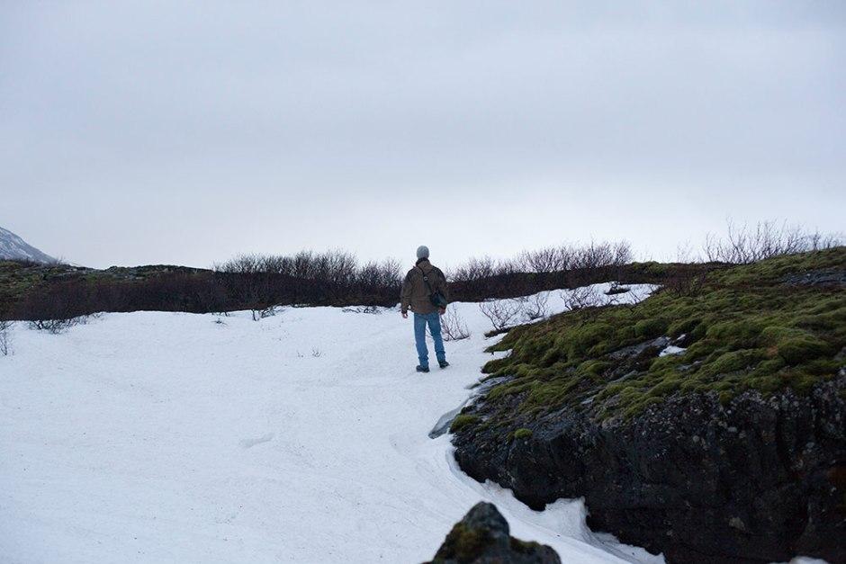 Island_Pingvellir (17)