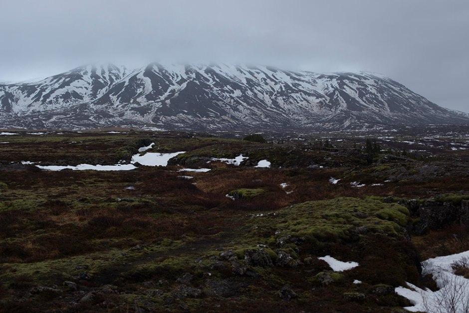 Island_Pingvellir (6)