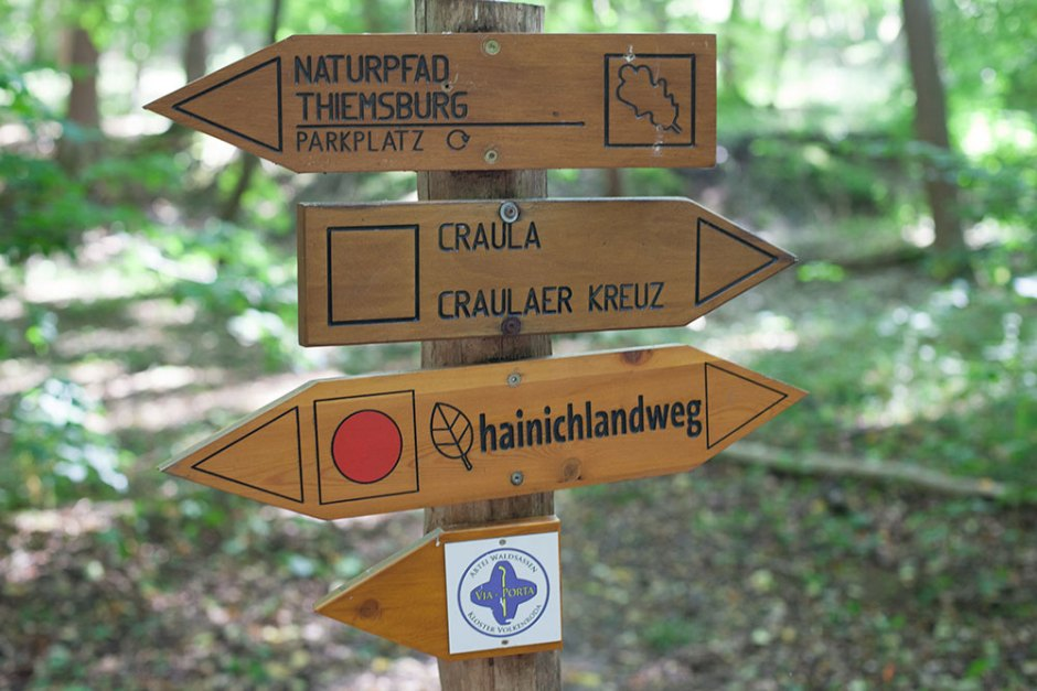 nationalparkhainich-(8)