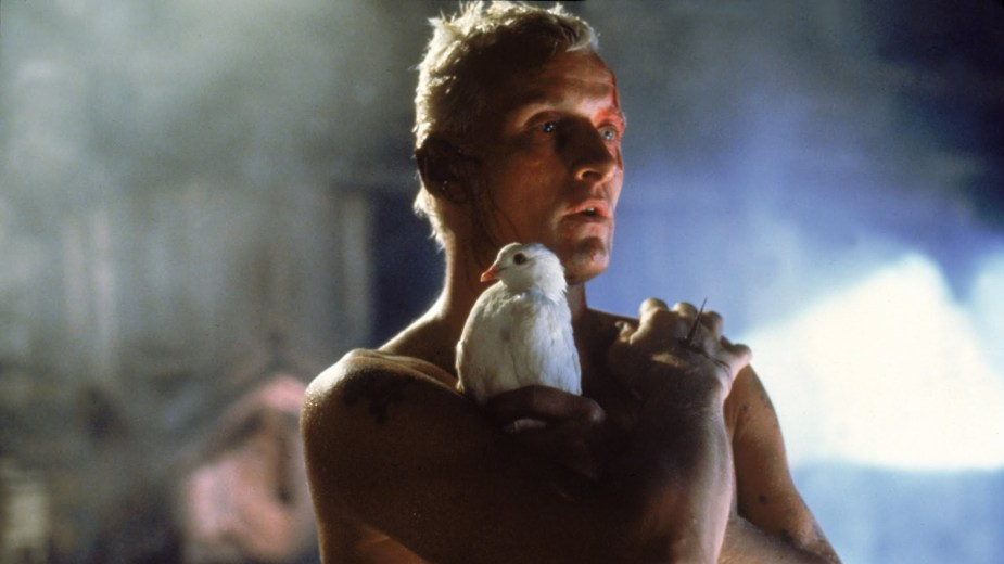 Roy Batty in Blade Runner