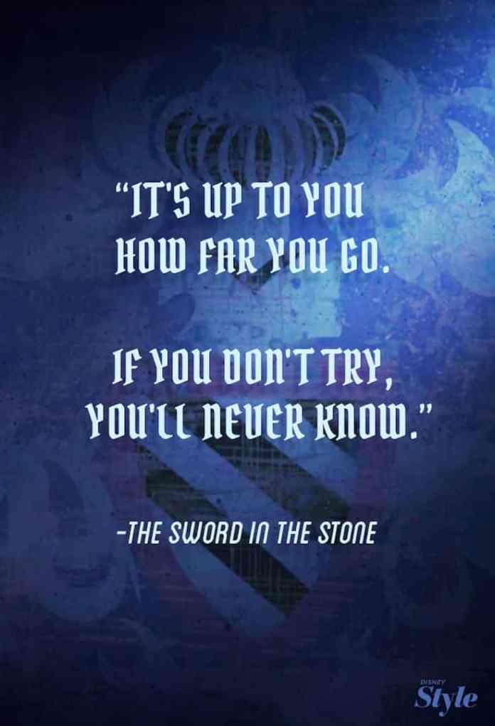 It's up to you how far you go. If you don;t ry, you'll never know. - The Sword In The Stone