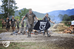 sheep dog spartan race