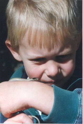 2000 Cody With Snake