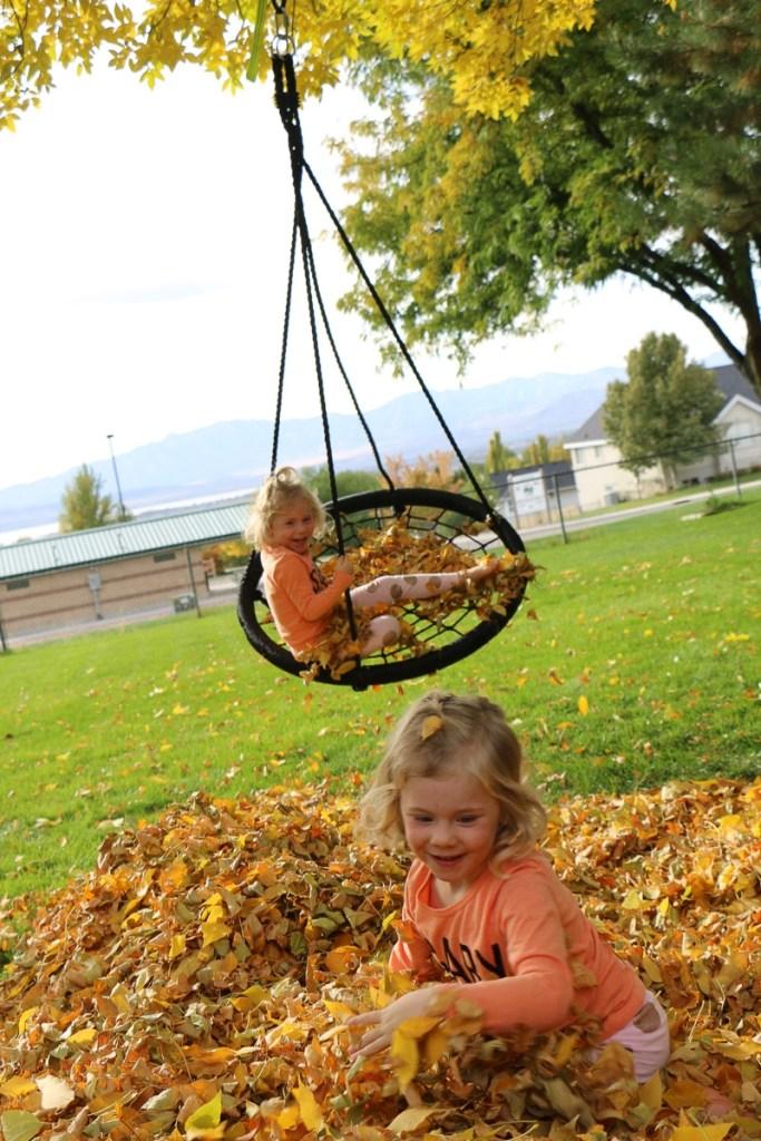 fall-leaves-utah-2016-17