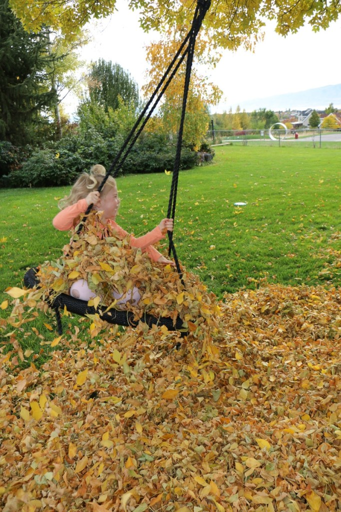 fall-leaves-utah-2016-9