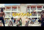 Diamond Platnumz _ Kanyaga video