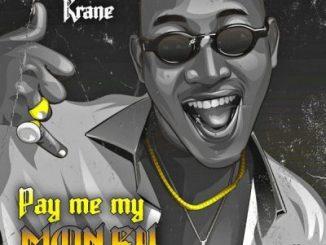 Dammy Krane _ Pay Me My Money