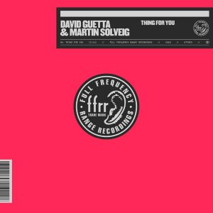 David Guetta Ft. Martin Solveig _ Thing For You