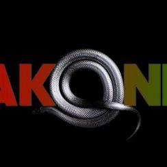 Akon _ Wakanda