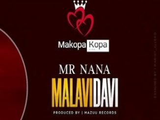 Mr Nana _ Malavidavi