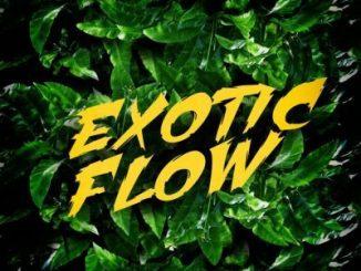 Omar Sterling _ Exotic Flow