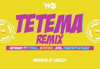 Rayvanny ft. Pitbull, Mohombi, Jeon & Diamond Platnumz _ Tetema remix