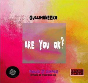 GuccimaneEko - Are You Ok?