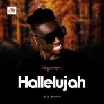 Akporo - Hallelujah