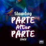 Slowdog - Parts after parte