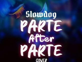 Slowdog - Parts after parte