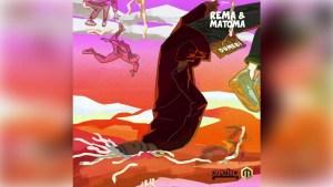 Rema - Dumebi Matoma remix