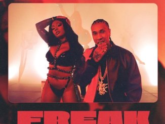 Tyga Ft. Megan Thee Stallion - FREAK