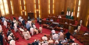 Fear as Nigerian senator removes face mask to sneeze during plenary (video)