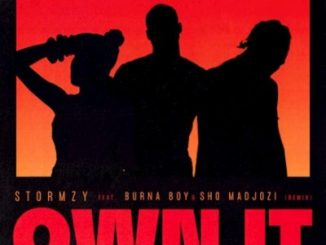 Stormzy Ft. Burna Boy, Sho Madjozi - Own It Remix